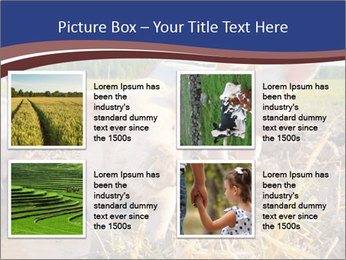 0000082732 PowerPoint Template - Slide 14