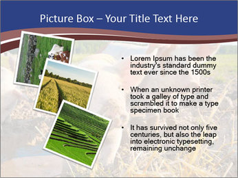 0000082732 PowerPoint Template - Slide 17