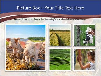 0000082732 PowerPoint Templates - Slide 19