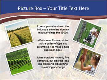 0000082732 PowerPoint Templates - Slide 24