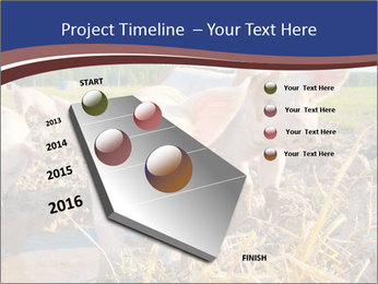 0000082732 PowerPoint Templates - Slide 26