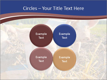 0000082732 PowerPoint Templates - Slide 38
