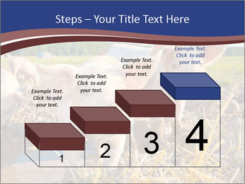0000082732 PowerPoint Templates - Slide 64