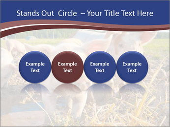0000082732 PowerPoint Templates - Slide 76