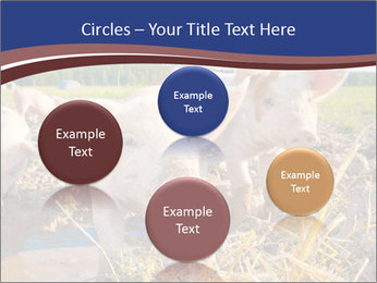 0000082732 PowerPoint Templates - Slide 77