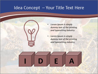0000082732 PowerPoint Template - Slide 80