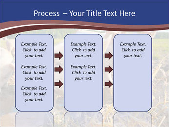 0000082732 PowerPoint Templates - Slide 86