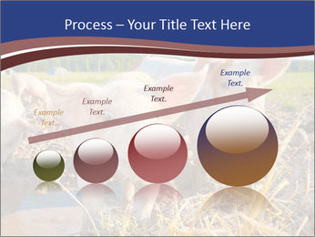 0000082732 PowerPoint Template - Slide 87