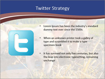 0000082732 PowerPoint Templates - Slide 9