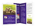 0000082735 Brochure Templates