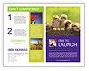 0000082735 Brochure Template