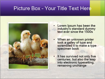 0000082735 PowerPoint Templates - Slide 13