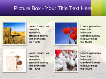 0000082735 PowerPoint Templates - Slide 14