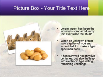 0000082735 PowerPoint Templates - Slide 20