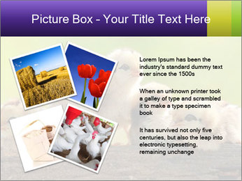 0000082735 PowerPoint Templates - Slide 23