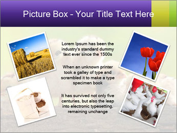 0000082735 PowerPoint Templates - Slide 24