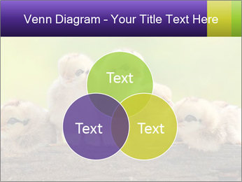 0000082735 PowerPoint Templates - Slide 33