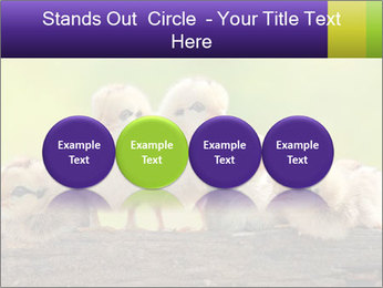 0000082735 PowerPoint Templates - Slide 76