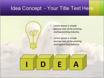 0000082735 PowerPoint Templates - Slide 80