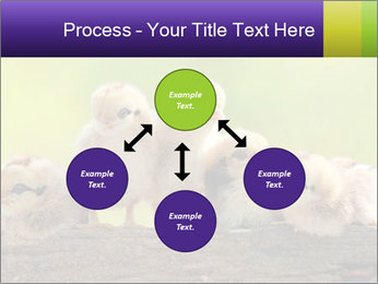 0000082735 PowerPoint Templates - Slide 91