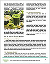 0000082740 Word Templates - Page 4