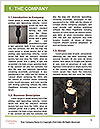 0000082749 Word Template - Page 3