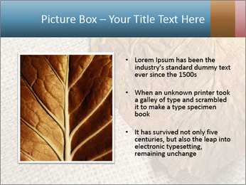 0000082751 PowerPoint Templates - Slide 13