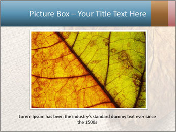0000082751 PowerPoint Templates - Slide 15