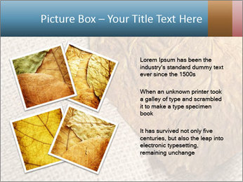 0000082751 PowerPoint Templates - Slide 23