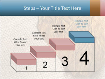 0000082751 PowerPoint Templates - Slide 64