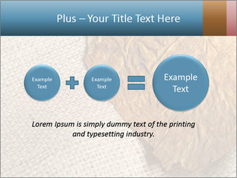 0000082751 PowerPoint Templates - Slide 75