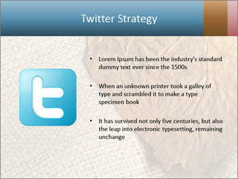 0000082751 PowerPoint Templates - Slide 9