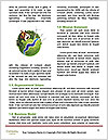 0000082753 Word Templates - Page 4