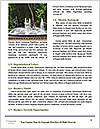 0000082754 Word Templates - Page 4