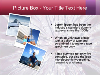 0000082755 PowerPoint Template - Slide 17