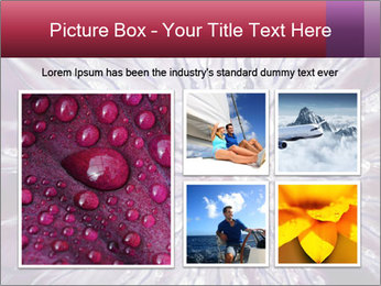 0000082755 PowerPoint Template - Slide 19