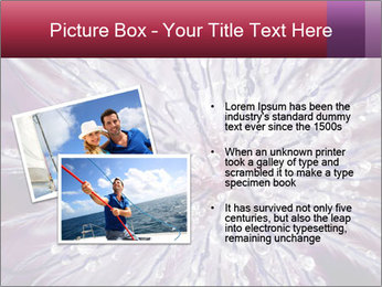 0000082755 PowerPoint Template - Slide 20