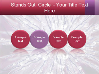 0000082755 PowerPoint Template - Slide 76