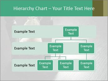 0000082766 PowerPoint Templates - Slide 67