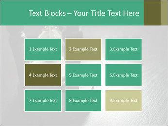 0000082766 PowerPoint Templates - Slide 68