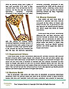0000082766 Word Templates - Page 4