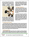 0000082771 Word Template - Page 4