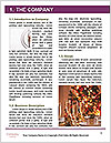 0000082776 Word Template - Page 3