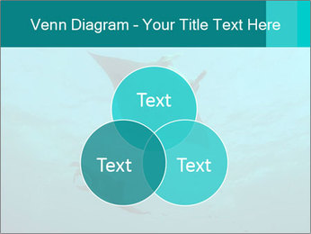 0000082785 PowerPoint Template - Slide 33