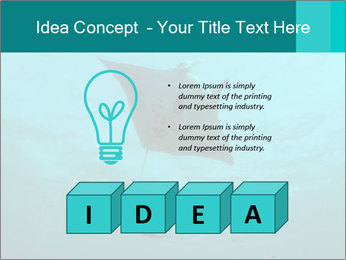 0000082785 PowerPoint Template - Slide 80
