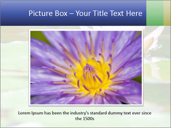 0000082788 PowerPoint Templates - Slide 16