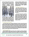 0000082793 Word Templates - Page 4