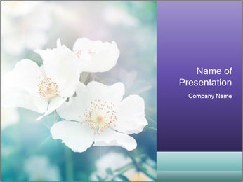 0000082794 PowerPoint Template - Slide 1