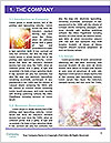 0000082794 Word Templates - Page 3