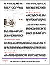 0000082795 Word Template - Page 4